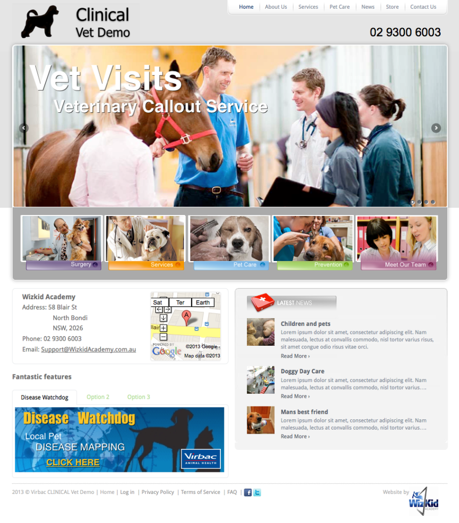 clinical-vet-Web-Design