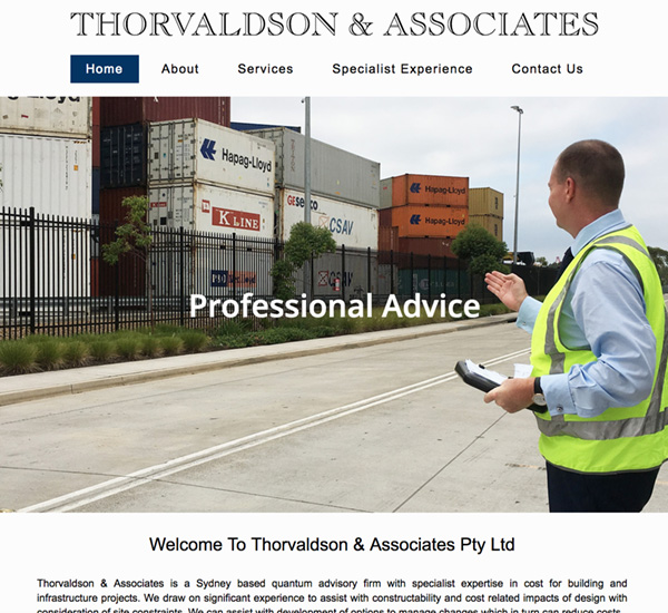 Thorvaldson & Associates One Page Website